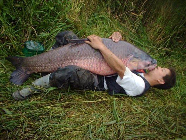 рыбалка и все что для нее надо